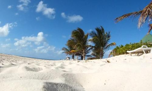 Lust auf Karibik? Foto: Flying Media