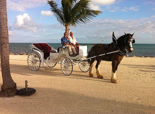 Florida-Keys-Brutus