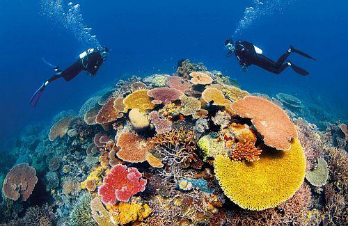 Ocean day Queensland