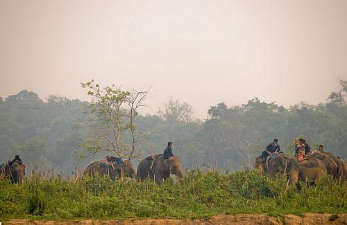 Anantara-Elefanten2