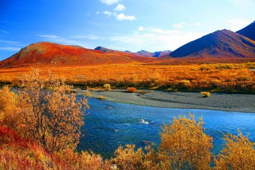 Herbst in den Northwest Territories (Bildnachweis: G.Sigl)